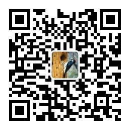 qrcode_for_gh_6a3df0cf8f12_258.jpg